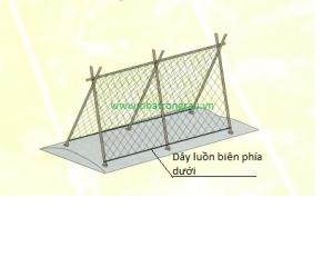 Mô hình căng lưới giàn leo hình chữ A