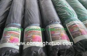 Lưới che nắng thái lan được phân phối tại công ty Minh Dương có các khổ 2m -3m- 4m. độ che phủ 50% - 70% - 80% độ bền 5 năm.